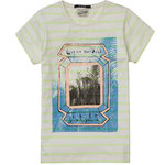 Scotch Shrunk T-Shirt mehrfarbig gestreift