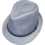 MaxiMo Hut Trilby silber
